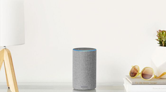 Alexa Device on top of table
