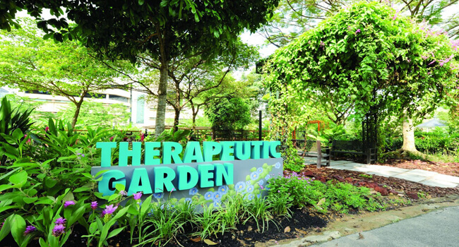 singapore therapeutic people live the longest